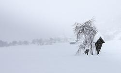 31.01.2014, B100, Ainet, AUT, Schneefälle in Oberkärnten und Osttirol, im Bild ein Bildstock versinkt im Schnee. Über Nacht vielen bis zu 1,2 Meter Neuschnee in weiten Teilen Oberkärnten und Osttirols und forderten bereits zwei Todesopfer. EXPA Pictures © 2014, PhotoCredit: EXPA/ Johann Groder