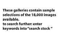 INFO re Searching