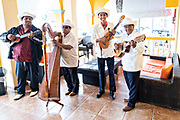 A traditional Son Jarocho band performs at the Hotel Posada Doña Lala in Tlacotalpan, Veracruz, Mexico. The tiny town is painted a riot of colors and home to legendary Mexican musician Agustín Lara.