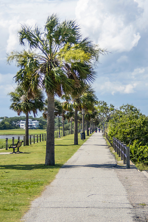 Tree-lined pathway leading to the bridge at Pitt Street Bridge, a local park on a former highway bridge, in Mount Pleasant, South Carolina on Wednesday, June 24, 2020. Copyright 2020 Jason Barnette