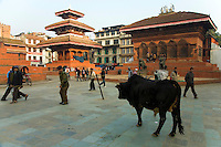 Kathmandu Durbar Square holds the palaces of the Malla and Shah kings who ruled over the city. Along with these palaces, the square also surrounds quadrangles revealing courtyards and temples.  When Kathmandu City became independent under the rule of King Ratna Malla the palaces became the royal palaces for its Malla kings. Other subsequent kings continued to rule from the square until 1896.