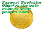 Humourous quotes series: Support Bacteria: They're  the only culture some people have