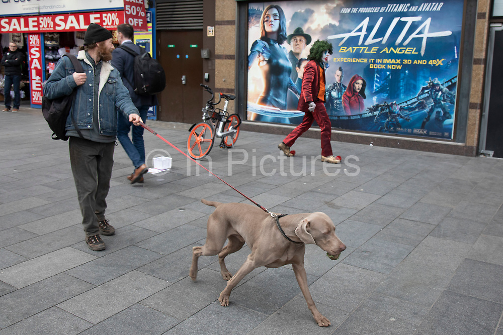 Man dressed up as a Joker type character with rotten teeth, stalks around on Leicester Square trying to scare passers by as a man walks past with his Weimaraner dog in London, United Kingdom.