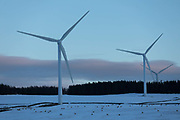 Wind turbines harnessing the wind in the Scottish Borders on 25th of January 2021 in Scotland, United Kingdom. The wind farm, Longpark Wind Farm, is long established and part of the renewable energy production in Scotland. The farm sits in the hills above the village Stow, near Galashields in the Scottish Borders. In between the wind turbines sheep grass in the fields lightly covered by snow.