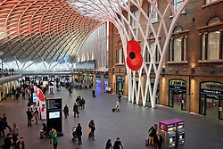 © Licensed to London News Pictures. 07/11/2013. London, United Kingdom. A big poppy has been installed in King's Cross Station for the Remembrance Sunday. Photo credit : Andrea Baldo/LNP