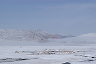 Tso Kar lies beneath freshly fallen snow in the Ladakh Himalaya
