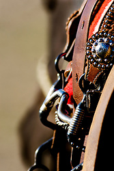 bridle hanging from saddle with blurred horses face framing the subject makes for an interesting western study.