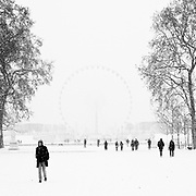 Paris, France. 17 Décembre 2009<br /> Jardin des Tuileries