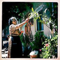 Kreta, Kroustas , 23 juli 2013.<br /> Bewoonster van het bergdorpje Kroustas even ten Zuiden van Kritsa in het Noord Oosten van Kreta.<br /> Woman on the Greek island of Crete. watering her plants.