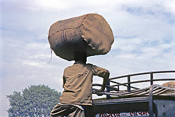 Man Loading Goods On Bus