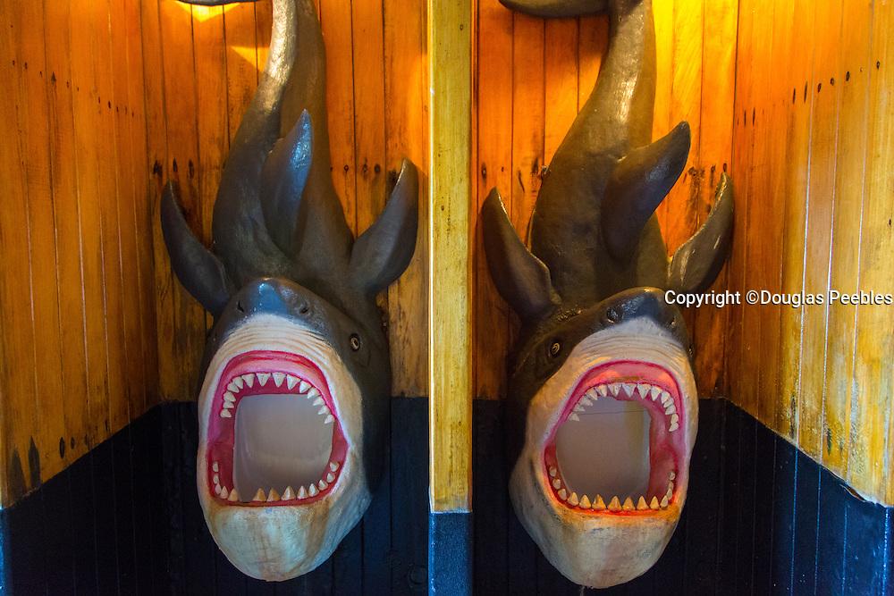 Shark Urinal, Marigalante Pirate Ship Tour, Puerto Vallarta, Jalisco, Mexico