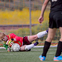 Rehoboth Lynx goalkeeper Jami Sweeney (0) dives to stop a shot from the Round Valley Elks Saturday at Rehoboth High School.