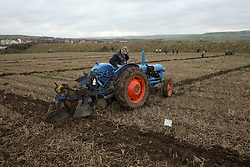 © Licensed to London News Pictures. <br /> 30/11/2014. <br /> <br /> Boulby, United Kingdom<br /> <br /> Richard Wilson from Stokesley checks his plough as he takes part in a ploughing match that takes place each year on fields next to the picturesque Yorkshire coastline near Staithes. Farmers attend each year to demonstrate their ploughing skills and to help raise money for charity with proceeds from this year going to Charlie Brown Cancer Care in Newcastle.<br /> <br /> <br /> Photo credit : Ian Forsyth/LNP