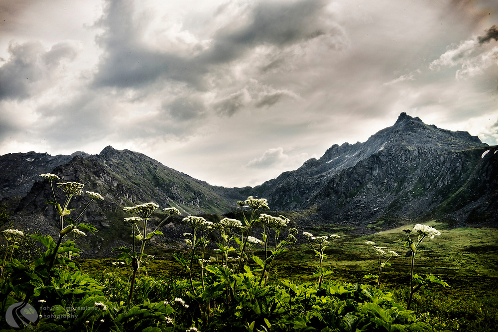Hatcher Pass, home of the abandoned Independence Mine. Deserted Beauty