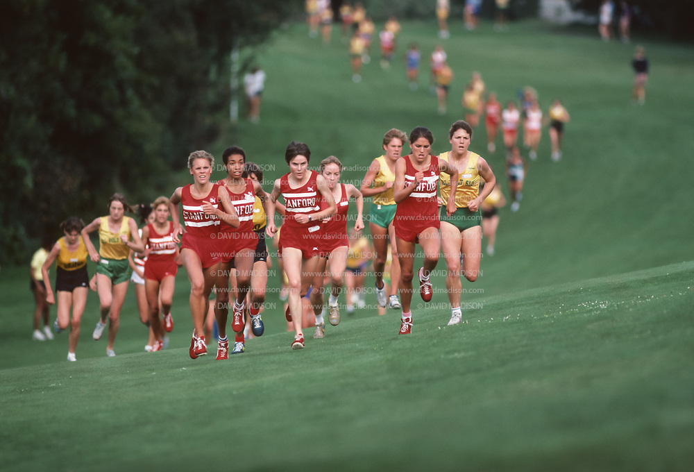 COLLEGE CROSS COUNTRY:  Ceci Hopp (St. Geme) and teammates run in a cross country race on the Stanford University golf course in October 1983.  Photograph by David Madison (www.davidmadison.com)