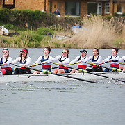 Quads, Fours, Eights