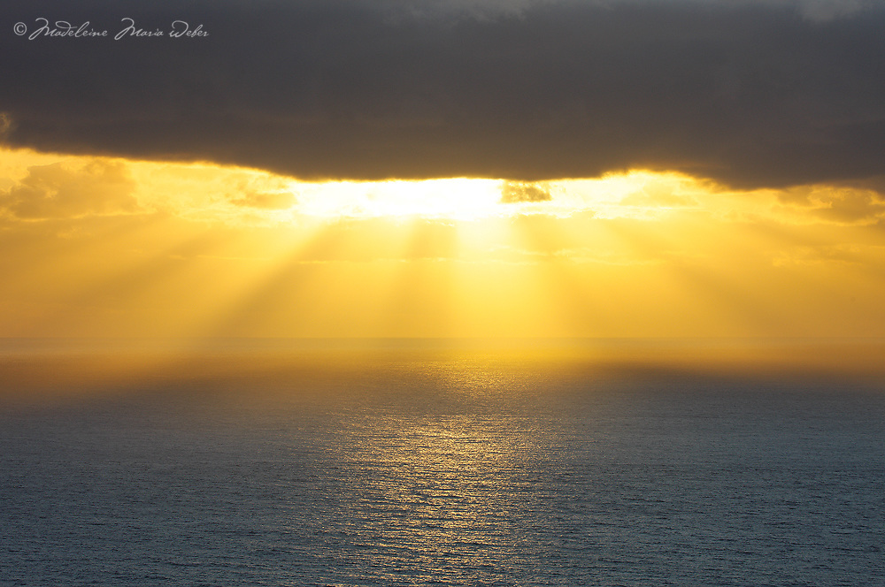 Gold Sun beams over Atlantic Ocean, Ireland / wt047..... Wishing everybody a year full of light, less storms and clear horizons in 2012