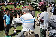 little boy in rose garden being photographed by granddad Japan