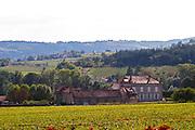 vineyard a chateau mercurey burgundy france