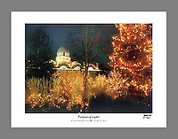 Signed and numbered 14.25x20.5 poster of the Festival of Lights at the Cincinnati Zoo and Botanical Garden