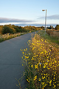 USA, Oregon, Eugene, Fern Ridge Bike Path
