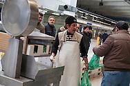 Milano,Il Mercato Ittico.                     The Fishmarket in milan.