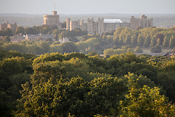 Windsor, UK. 21 July, 2020. A view of Windsor Castle from Snow Hill in Windsor Great Park.