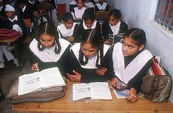 School girls and boys sitting at desks reading books in senior secondary modern school; Punjabi University; Patiala; Punjab; India,