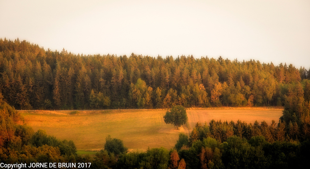 Sunset on a field surrounded by trees in Bavaria, Germany
