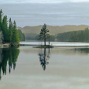 Store Leirsjøen eller Stor-Leirsjøen ligger i Leirelvvassdraget i Trondheim bymark. Leirsjøen var opprinnelig adskilt fra Frøsetvatnet i øst, men ved oppdemmingen i 1929 fløt vannene sammen. Leirsjøen var drikkevannskilde i årene 1922 til 1993, og reservevannkilde etter det. Av denne grunn har det ikke vært tillatt å fiske i vannet. Resultatet er en stor bestand av småfallen ørret og røye. Ved prøvefiske var gjennomsnittsstørrelsen i fangstene omkring 100 gram[1]. Det finnes også trepigget stingsild i vannet. Dessuten har bever tilhold i vannet.Vannet har tilsig fra Litl-Leirsjøen i vest, og utløp til Leirelva mot øst.fra WKI