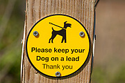 Macro close up of Dogs on Lead Please sign on fencepost, Sutton, Suffolk, England, UK