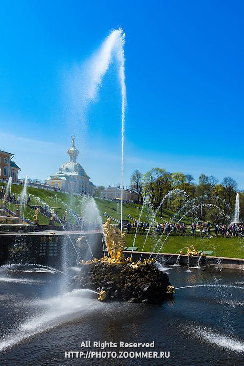 Samson Fountain In Peterhof, Saint Petersburg, Russia