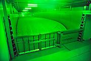 Nederland, Oosterhout, 14-7-2011De productie van tauge. De kweekboxen waar met warmte en vocht de bonen uitgroeien.Door de besmetting met de ehec bacterie van kiemgroenten in Duitsland is de productie sterk verminderd.Foto: Flip Franssen/Hollandse Hoogte