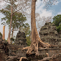 Ta Prohm is another amazing complex which demonstrate how vegetation fights to take back this location once inhabited by more than 12500 Khmer people.