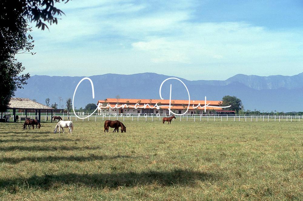 Breeding farm La Silla<br /> Photo © Dirk Caremans