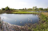 MAARSBERGEN - Golfclub Anderstein in Maarsbergen. Hole B2. COPYRIGHT KOEN SUYK