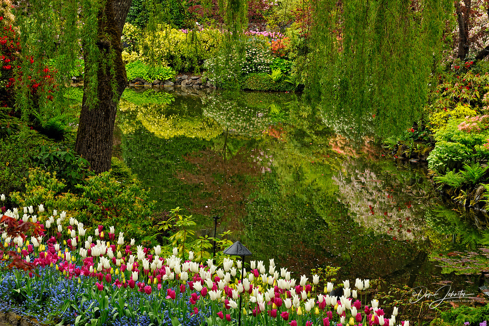 Butchart Gardens- Floral displays near Quarry Lake in the Sunken Garden, Victoria, BC, Canada