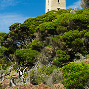 Boyd's Tower in Ben Boyd National Park on the Sapphire Coast of southern New South Wales. Originally intended by it's creator, local entrepreneur Benjamin Boyd, as a lighthouse, it was denied the license and was subsequently converted into a whale spotting station for the local whaling station, a purpose to which it is ideally suited sitting as it does on a headland on Red Point with magnificent views over the ocean on three sides. It was built in 1847.