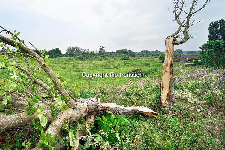 Nederland, Nijmegen, 5-6-2019Door de ontsuimige onweersbui, hoosbui,rukwinden, van gisteravond is een boom doormidden gesplitst. Het onweer ging gepaard met zeer harde windstoten en doordat de bomen in het blad zitten vangen ze veel wind.Foto: Flip Franssen
