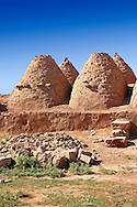 """Pictures of the beehive adobe buildings of Harran, south west Anatolia, Turkey.  Harran was a major ancient city in Upper Mesopotamia whose site is near the modern village of Altınbaşak, Turkey, 24 miles (44 kilometers) southeast of Şanlıurfa. The location is in a district of Şanlıurfa Province that is also named """"Harran"""". Harran is famous for its traditional 'beehive' adobe houses, constructed entirely without wood. The design of these makes them cool inside. 8 .<br /> <br /> If you prefer to buy from our ALAMY PHOTO LIBRARY  Collection visit : https://www.alamy.com/portfolio/paul-williams-funkystock/harran.html<br /> <br /> Visit our TURKEY PHOTO COLLECTIONS for more photos to download or buy as wall art prints https://funkystock.photoshelter.com/gallery-collection/3f-Pictures-of-Turkey-Turkey-Photos-Images-Fotos/C0000U.hJWkZxAbg ."""