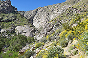 Rugged Trail at Tahquitz Canyon Palm Springs