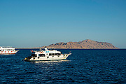 Boating and snorkeling the Red Sea, off of the coast of Sharm el-Sheikh, Egypt.