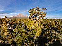 Aerial view of Mt. Taranaki, Egmont National Park, North Island, New Zealand