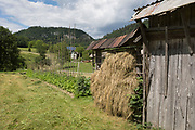 Grass drying on a small version of traditional Slovenian drying frame hay rack called a kozolec, on 18th June 2018, in Selo, Bled, Slovenia.
