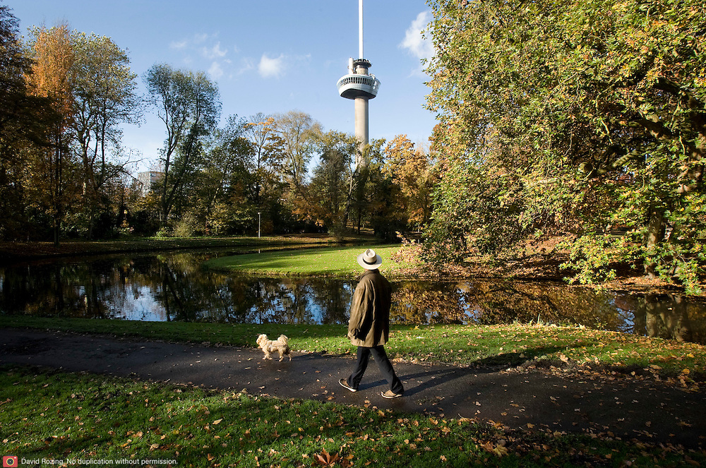 Nederland Rotterdam 8 november 2008 20081108 Foto: David Rozing ..Man luit zijn hondje uit in het park bij de Euromast / herfst..Foto: David Rozing