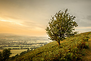 Hillside scenic view of fields at sunset in Shropshire, England, UK