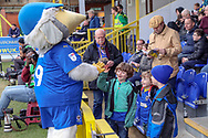 Haydon the Womble slapping hand of fan during the The FA Cup 5th round match between AFC Wimbledon and Millwall at the Cherry Red Records Stadium, Kingston, England on 16 February 2019.