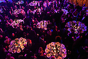 The Laurence Olivier Awards,The Grosvenor House Hotel, Park Lane. London.   21 March  2010