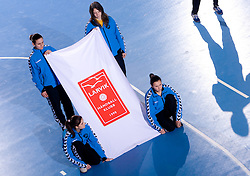 Flag of Larvik before 3rd Main Round of Women Champions League handball match between RK Krim Mercator, Ljubljana and Larvik HK, Norway on February 19, 2010 in Arena Kodeljevo, Ljubljana, Slovenia. Larvik defeated Krim 34-30. (Photo by Vid Ponikvar / Sportida)