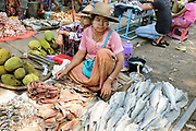 Women selling jackfruit and fish at Danyingone Station on 19th March 2016 in Yangon, Myanmar. At Danyingone Station, one of the Circular Railways 39 stations, the market spills out onto the tracks.